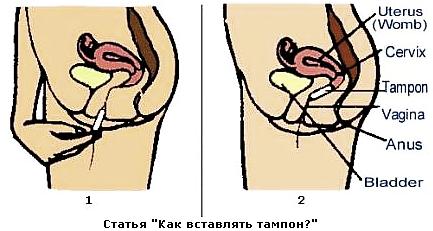 http://www.yangl.ru/wp-content/uploads/2010/06/13.png