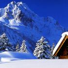 Как пережить зиму...