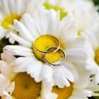 Обручальные кольца: узнаем о них больше