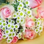 Цветы с доставкой: радуем любимых
